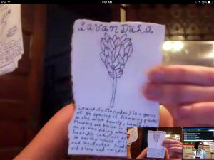 Katrina Schaag holding up a card with a small drawing and text. In a Google Hangout window.