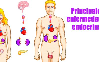 Principales enfermedades endocrinas