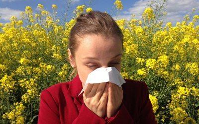 Alimentos que te ajudam a lidar com as alergias sazonais