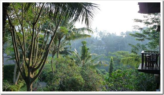 2011-03-22 Bali 001