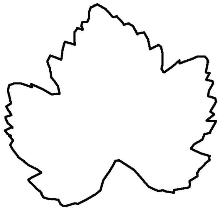 Herbstblatt - Schablone 5 - Medienwerkstatt-Wissen © 2006