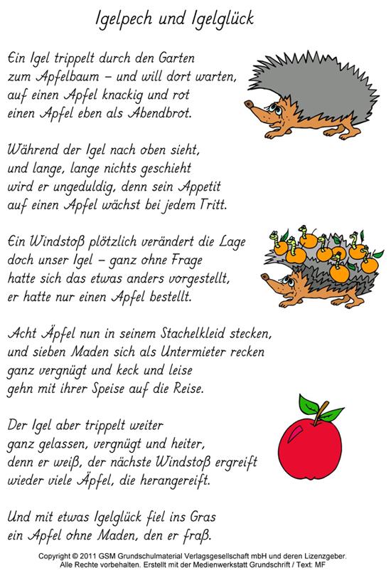 Gedicht Igelpech und Igelglck  MedienwerkstattWissen