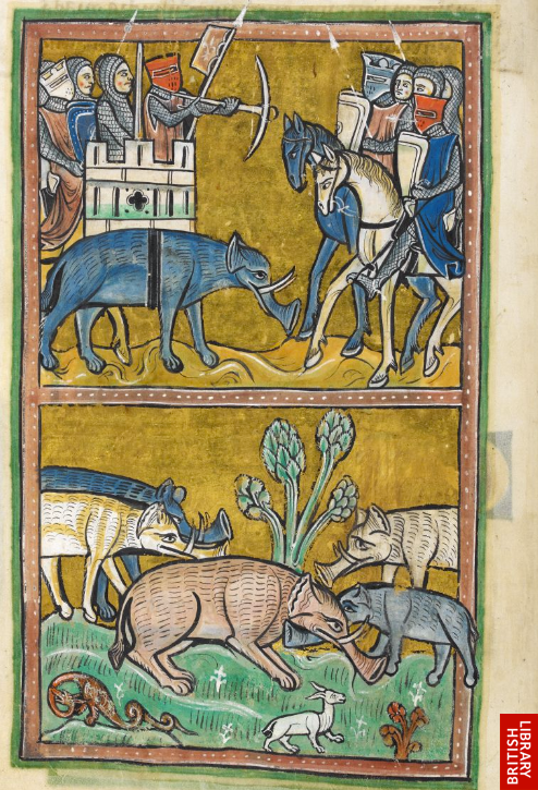 The Rochester Bestiary. Southeast England (Rochester?), c. 1230-14th century. British Library, Royal MS. 12 F XIII, fol. 11v. [bl.uk/manuscripts]