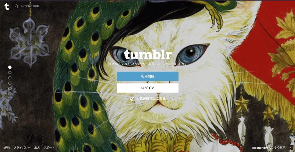 3.Tumblr