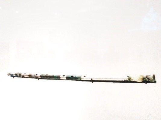 Origen tubo de tibia