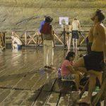 Tulum, Coba, Playa del Carmen y Cenote Tour