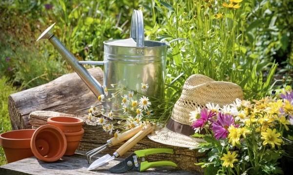 Herramientas de jardinería imprescindibles para tu huerto