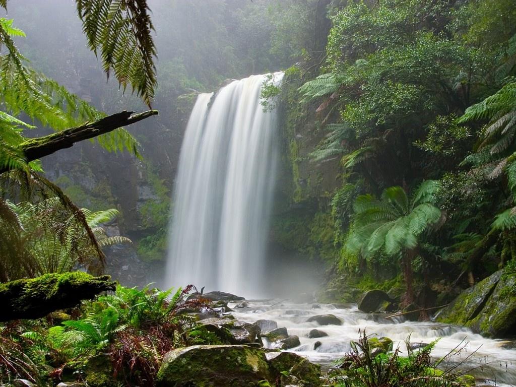 Fondos de pantalla de paisajes naturales15