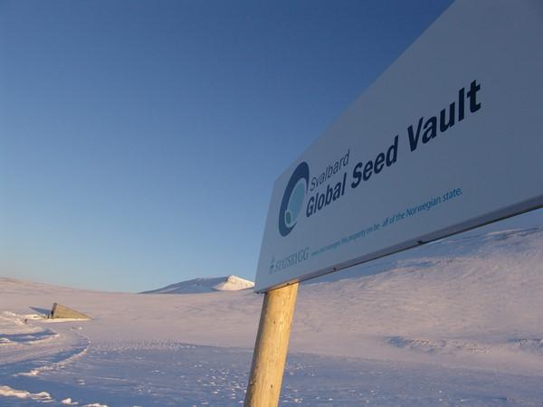 Svalbard Global Seed Vault j