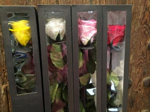 Consejos para cuidar y conservar las flores liofilizadas