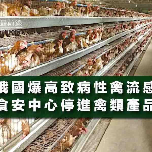【俄國爆高致病性禽流感】食安中心停進禽類產品