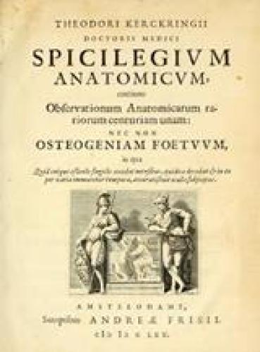 Latijn was als taal de norm