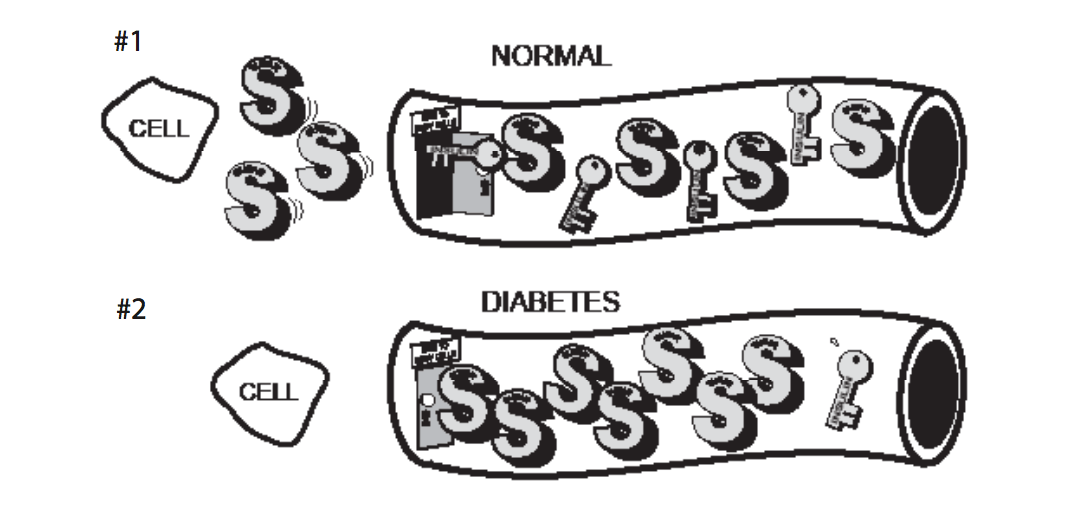 diabetes-graphic