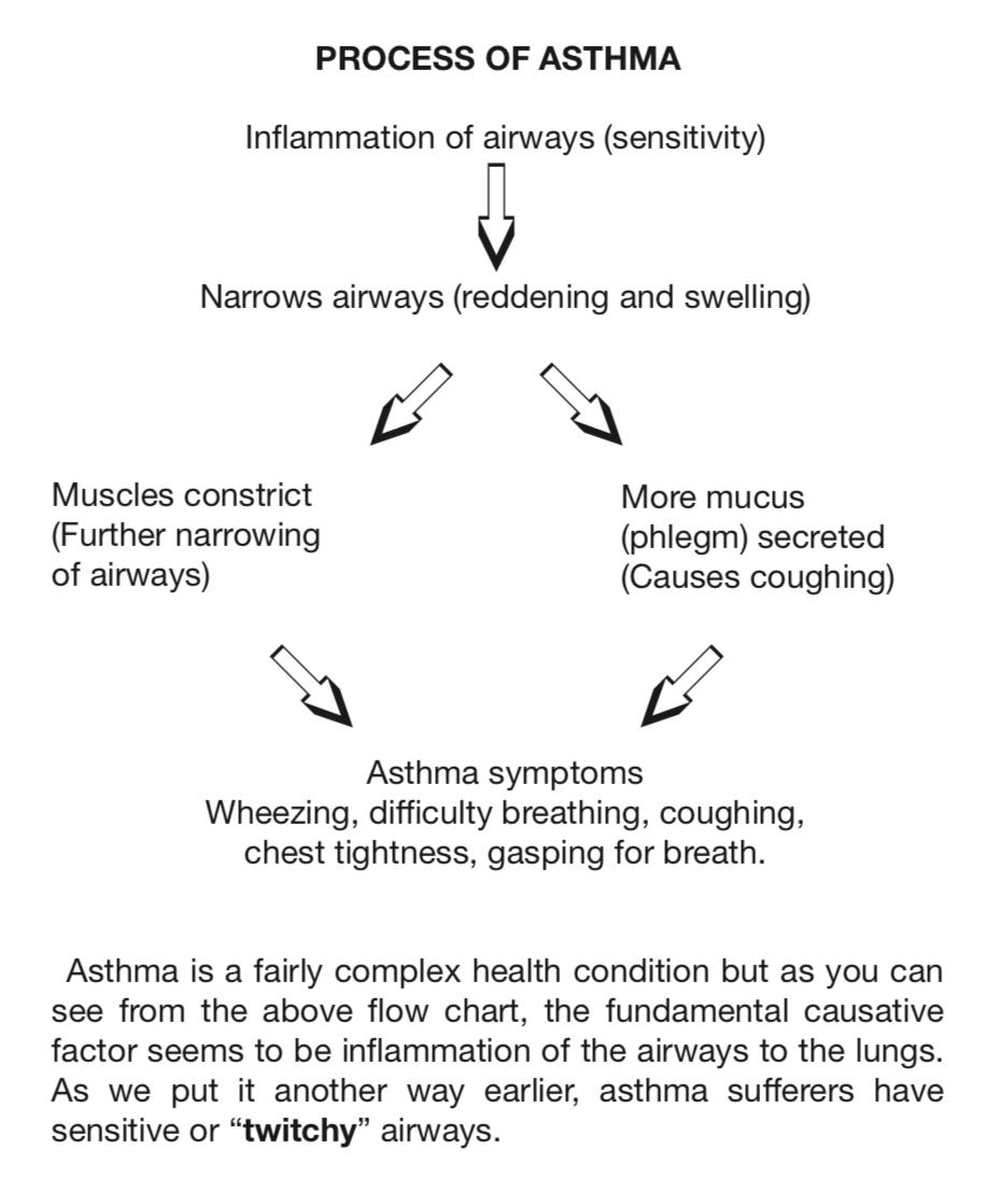asthma process chart