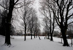 Ormeau Park in Winter