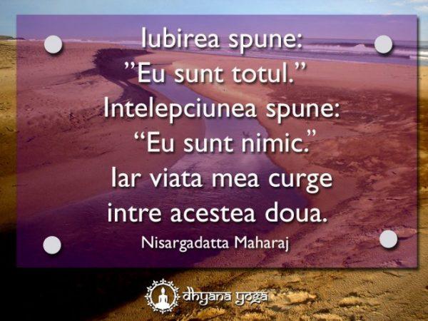 nisargadatta maharaj citat