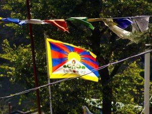 Steagul tibetan in Dharamsala, India.