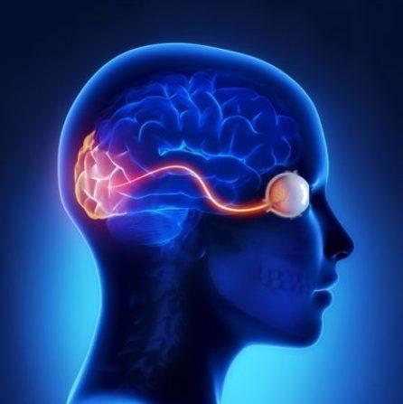 relatia minte ochi trataka