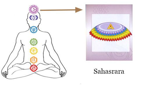 Chakra Meditation : Image of Sahasrara (Crown) Chakra