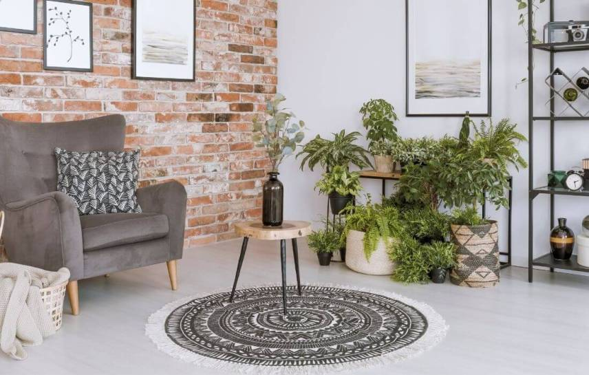 mandala rug and plants in an industrial room
