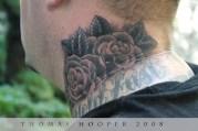 Jason's Roses