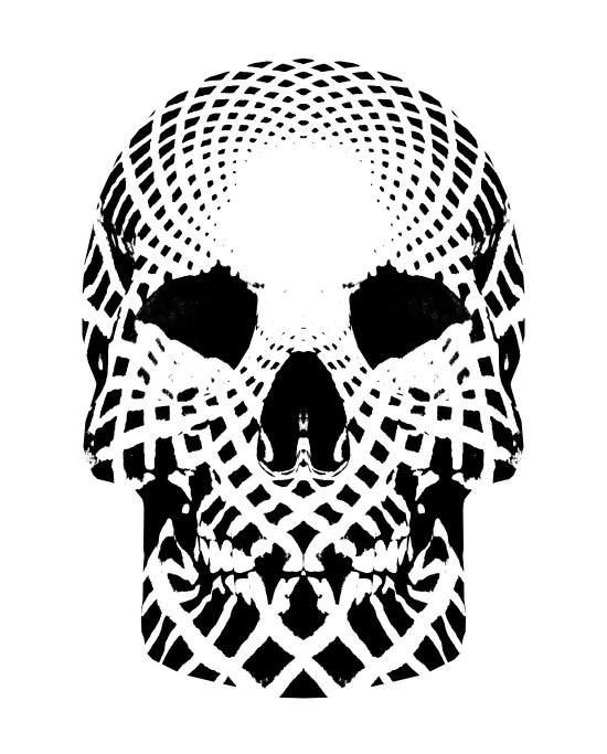 Op Skull 11