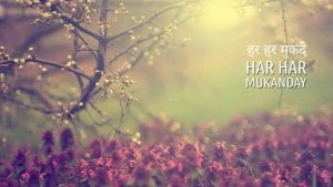 Day 17 - Har Har Mukanday HD Wallpaper Download Mantra