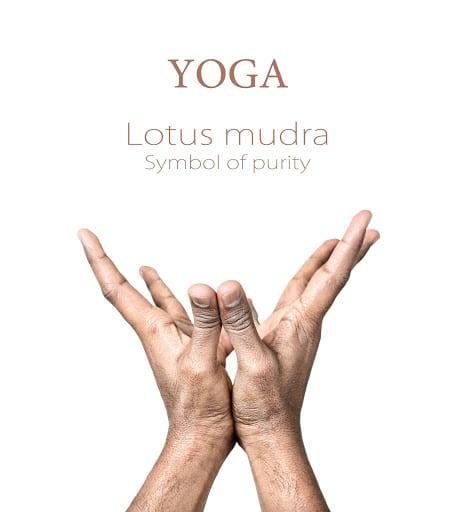 Padma mudra for Heart chakra