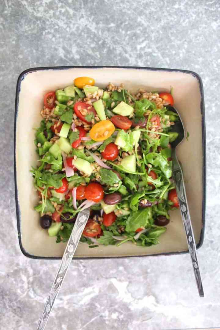 Farro Salad bowl with greens, tomatoes, cucumbers, green peppers, onions and kalamata olives.