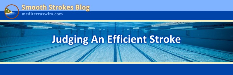 Judging An Efficient Stroke Mediterra Swim Total Immersion Open Water Specialist