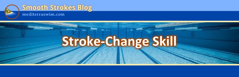 1511 stroke change skill header