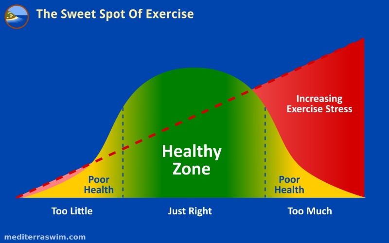 The Sweet Spot Of Exercise