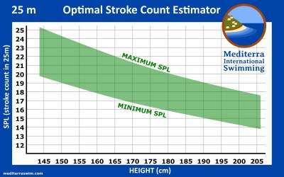 When Choosing Your Optimal Stroke Count