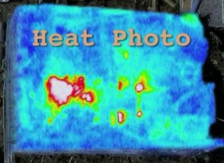 heat photo