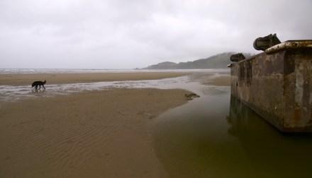 dock1-panorama