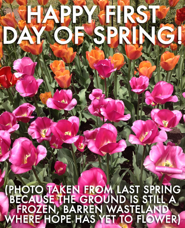 Images Of Happy First Day Of Spring : images, happy, first, spring, Happy, First, Spring!, Medium, Large