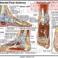 Diagram Of The Knee And Ligaments Emergency Plan Medivisuals Normal Foot Anatomy Exhibits