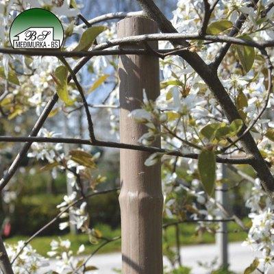 Plastični kolci za vrt