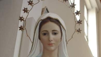 Photo of Vidjelica Marija: Gospa je izabrala Međugorje
