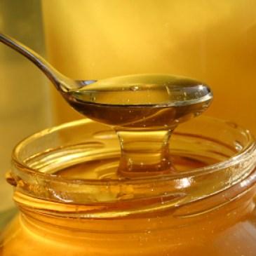 U medu pronađeni dodati šećer i antibiotici