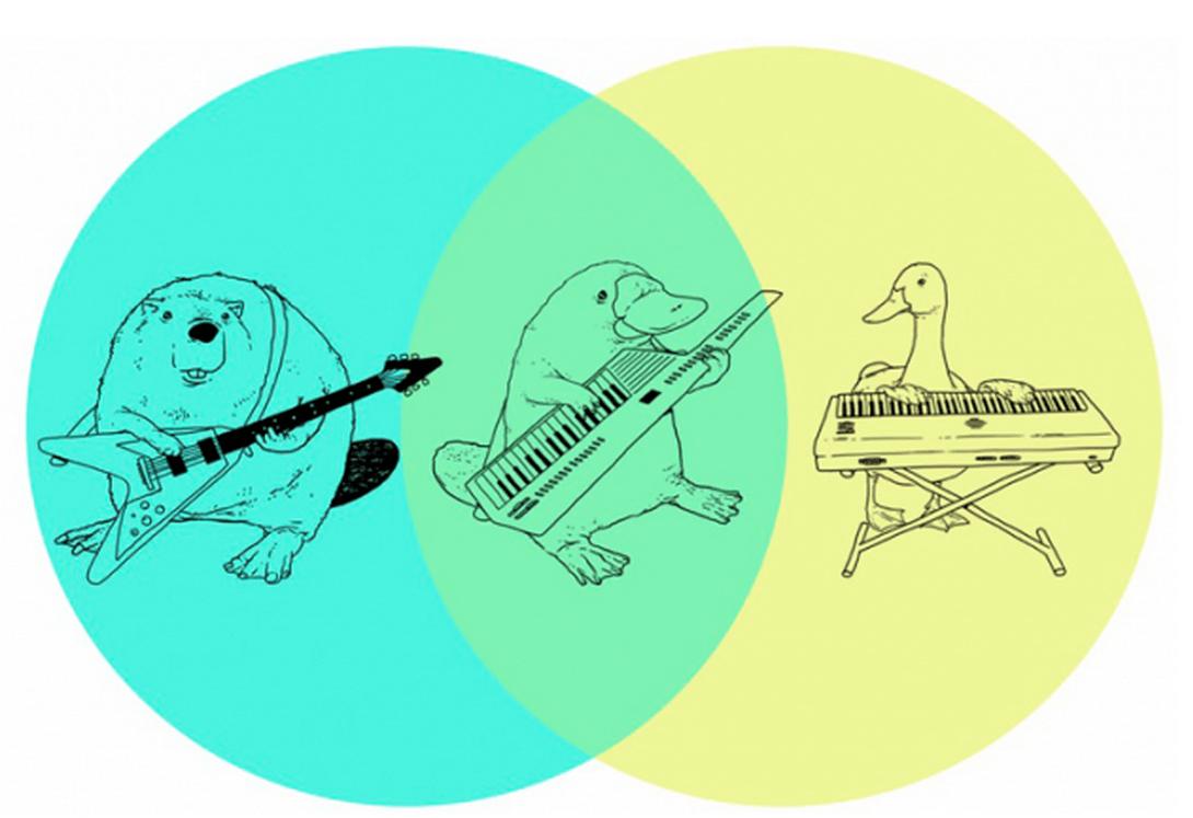platypus venn diagram shirt