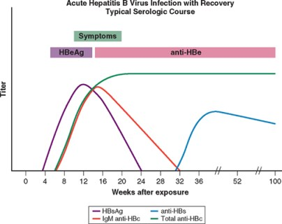 Acute Hepatitis B infection with recovery