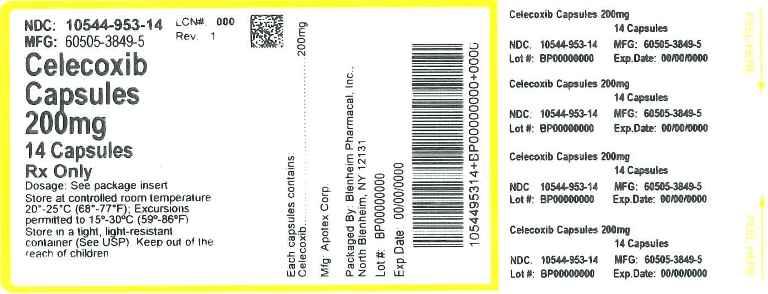 Celecoxib (Blenheim Pharmacal Inc.): FDA Package Insert ...