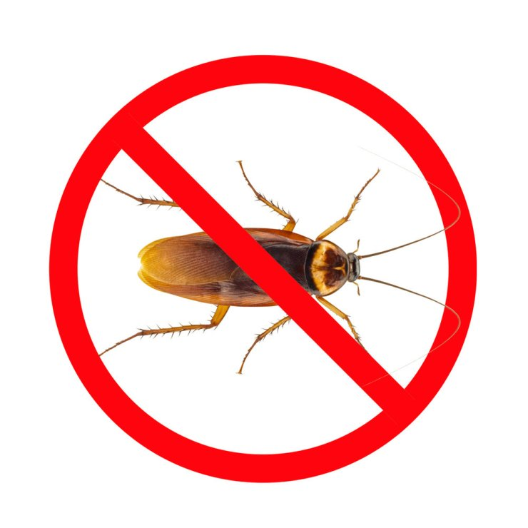 Image result for insect repellent sign