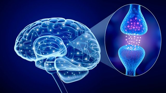 Low Serotonin Levels Linked To Dimentia