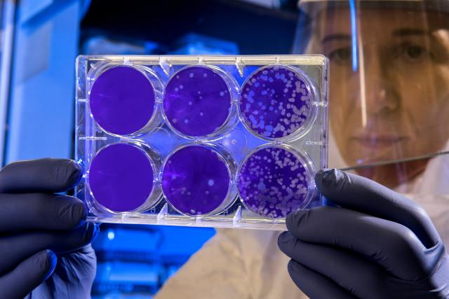 Researchers find a new way to kill antibiotic-resistant bacteria