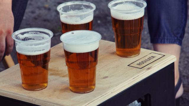 University of Sydney researchers find obesity worsens liver-damaging effects of alcohol