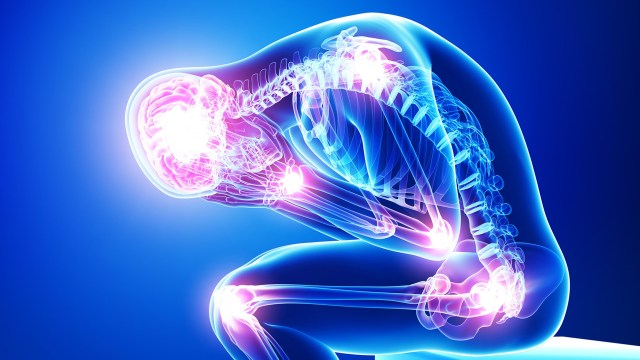 Fibromyalgia found to most likely be caused by autoimmune disorder