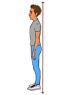 back posture chair support chairs on wheels for elderly guide to good posture: medlineplus