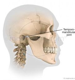 temporomandibular joint [ 1030 x 1002 Pixel ]
